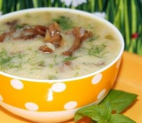 Zupa kurkowa z kurkami na maśle