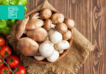 Czas na grzybobranie – jak przyrządzać grzyby?