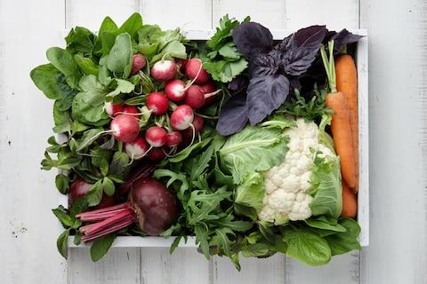 Blanszowanie warzyw