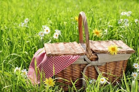 Piknik na świeżym powietrzu czyli mini wakacje w środku tygodnia